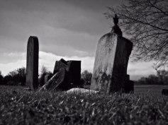 Nadler_Forgotten
